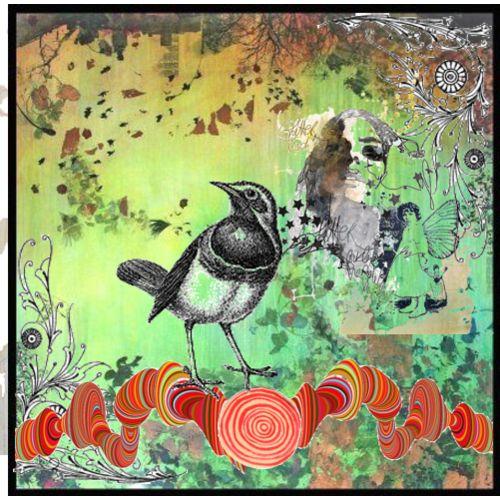 Digital Collage Bird Art by Flickr User Peregrine Blue