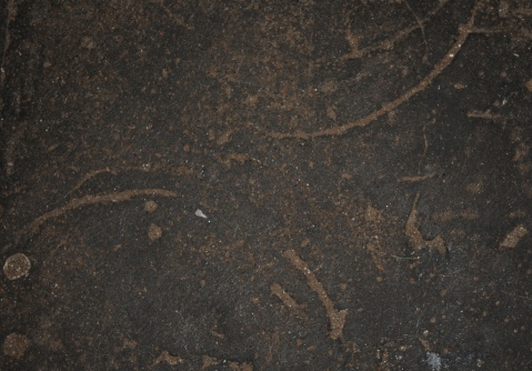 Marks made by slaves in the Cape Coast Castle slave dungeons, Image by Flickr user Floris van Halm