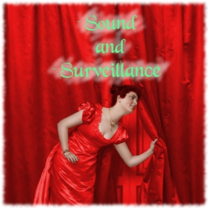 Sound and Surveilance4