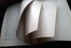 """Blank pages intentionally, end of book"" by Wikimedia user Brian 0918, CC BY-SA 3.0"