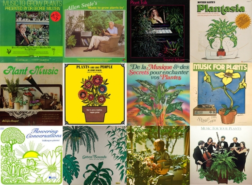 Botanical Rhythms A Field Guide To Plant Music Sounding Out